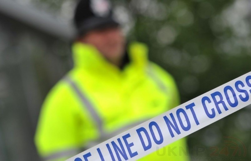 murder probe launched after a woman is killed in bexhill