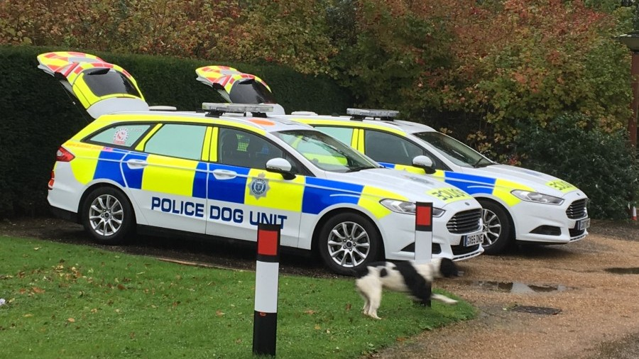 Two arrests made following violent incident in Crawley