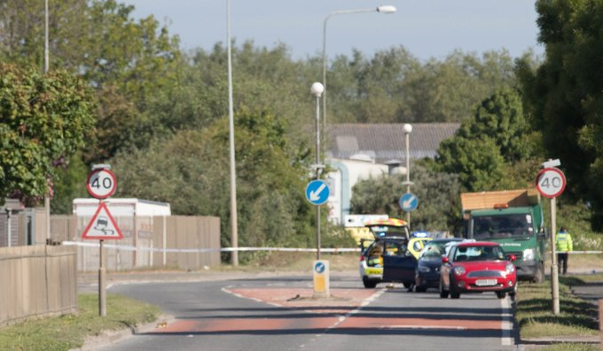 Driver killed by timber falling from lorry in Newhaven