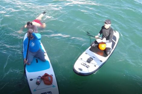 Can anyone help Newhaven Lifeboat identify these two paddle boarders who in the sea off seaford?